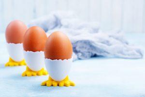 Puișori din ouă fierte